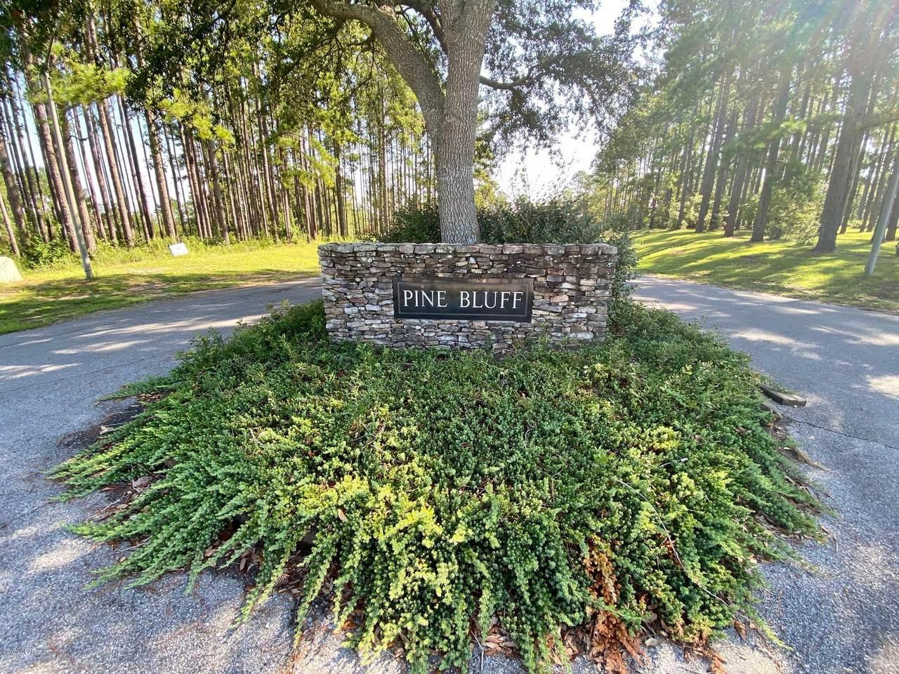 Lot 9 Pine Bluff Drive - Photo 1