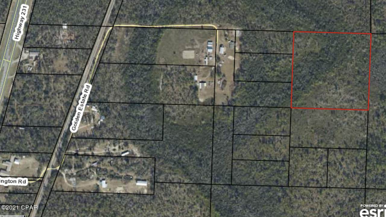 000 Timberland Rd Road - Photo 1