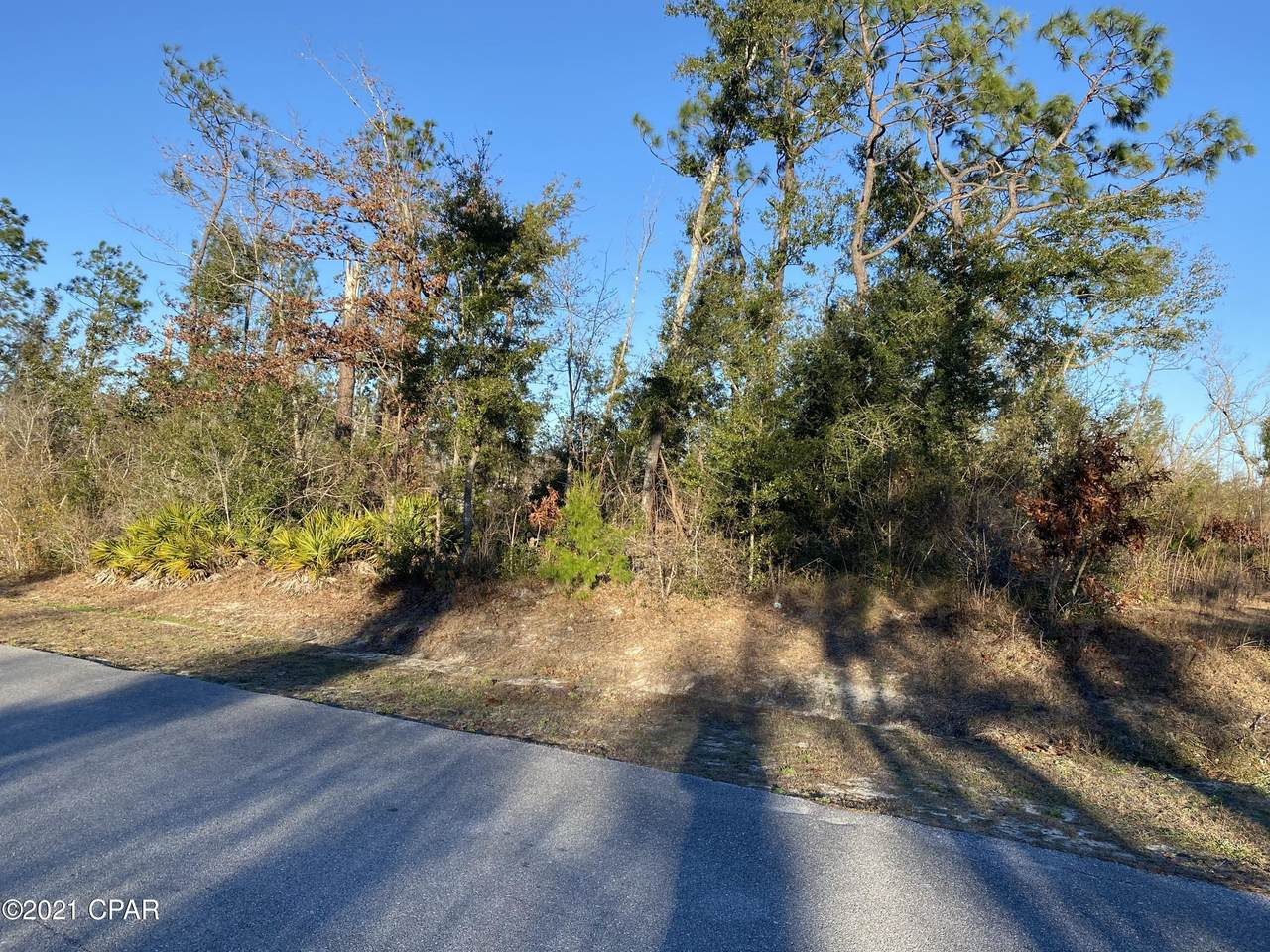 10814 Cedar Ridge Lane - Photo 1