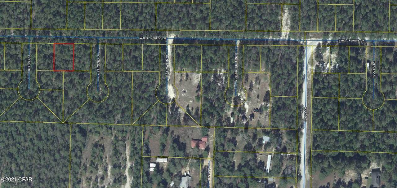 Lot 9 Big Cypress Drive - Photo 1