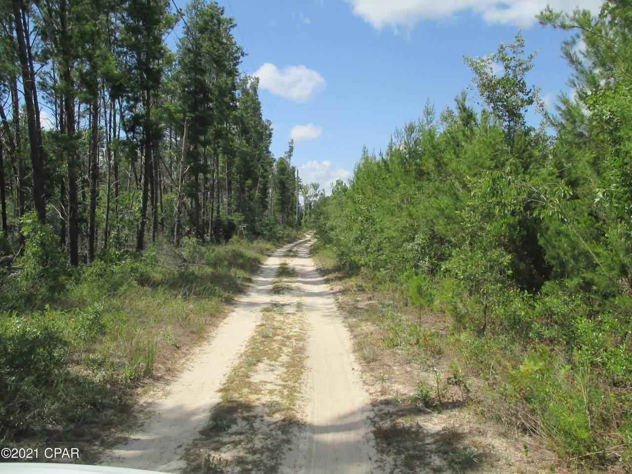 11737 Raccoon Road - Photo 1