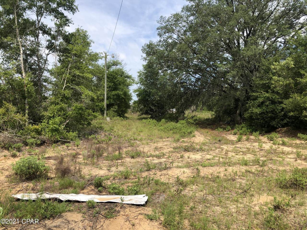 20533 Deep Springs Road - Photo 1