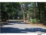 3911 Magnolia Bluff Lane - Photo 4