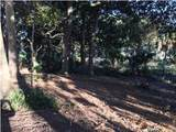 001 Bunkers Cove Road - Photo 11