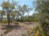 1103 Water Oak - Photo 3