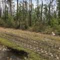 000 County Road 274 - Photo 2
