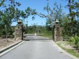 3912 Magnolia Bluff Lane - Photo 6
