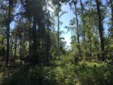 5 acres Whispering Pine Cr Circle - Photo 1
