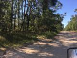 5 acres Whispering Pine Cr Circle - Photo 3