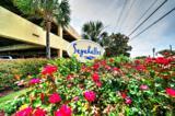 5115 Gulf Drive - Photo 31