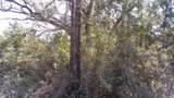 5.3 acres Tobe Retherford Road - Photo 10