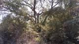 5.3 acres Tobe Retherford Road - Photo 9