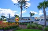 203 Poinsettia Drive - Photo 52