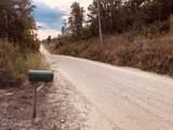 2259 Reedy Creek Road - Photo 17