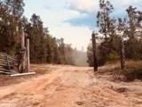 2259 Reedy Creek Road - Photo 18