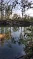 1650 Turtle Bend Lane - Photo 1