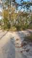 1650 Turtle Bend Lane - Photo 10