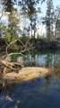 1650 Turtle Bend Lane - Photo 3