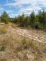 0000 Tiger Trail - Photo 2