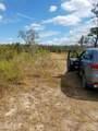 0000 Tiger Trail - Photo 3