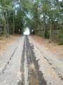 0000 Tiger Trail - Photo 6