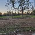 000 Panhandle Road - Photo 2