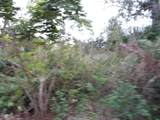 225 Bunkers Cove Road - Photo 15