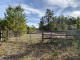 1624 White Western Lake Lane - Photo 27