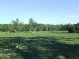 2835 Beall Packing Road Road - Photo 45