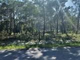 1609 Dayflower Drive - Photo 2
