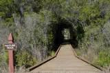1105 Water Oak - Photo 20