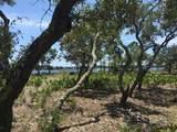 1105 Water Oak - Photo 31