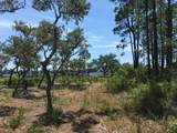 1105 Water Oak - Photo 32