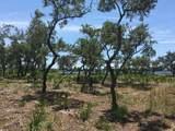 1105 Water Oak - Photo 33