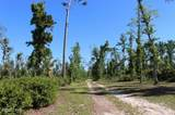 10012 Windsong Way - Photo 65