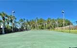 7135 Dolphin Bay Boulevard - Photo 60