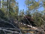 0000 Timacuan Trail - Photo 4