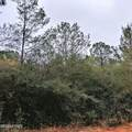 Lot 41 Clearwater Drive - Photo 1