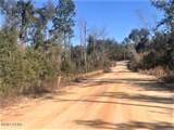 0 Myakka Street - Photo 11