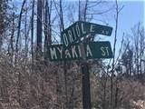 0 Myakka Street - Photo 7