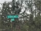 0 Starling Avenue - Photo 10