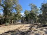 4660 Grassy Pond Road - Photo 8