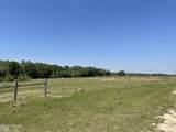 125 Acre Kirkland Road - Photo 3