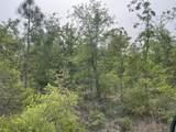 0 Seminole Lane - Photo 1