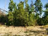 4734 Bayou Bluff Trail - Photo 1