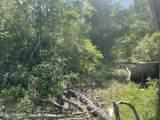 10308 Silver Lake Road - Photo 13
