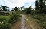 5647 Bayou George Road - Photo 8