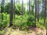 1524 Salamander Trail - Photo 3