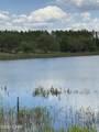 14719 Bream Pond Drive - Photo 1
