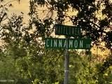 0 Cinnamon Drive - Photo 10